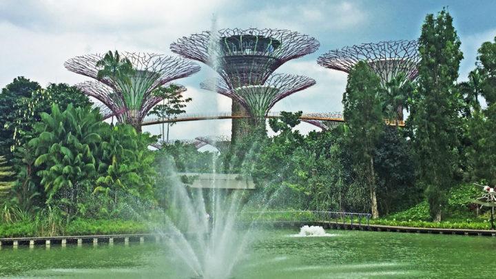Hi Singapore! Сингапур — футуризм и сказка в одном флаконе!