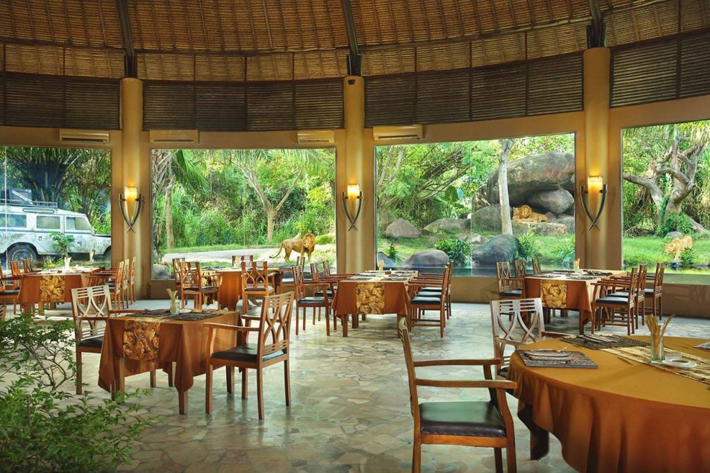 Отель со львами в парке сафари На бали