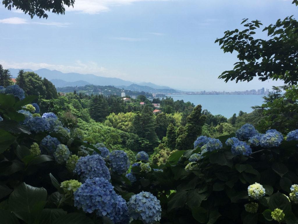 Вид на Ботанический сад в Батуми